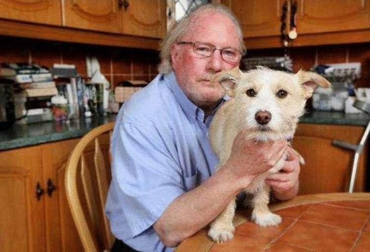 Как уличная собака, которую приютили, спасла жизнь своему хозяину