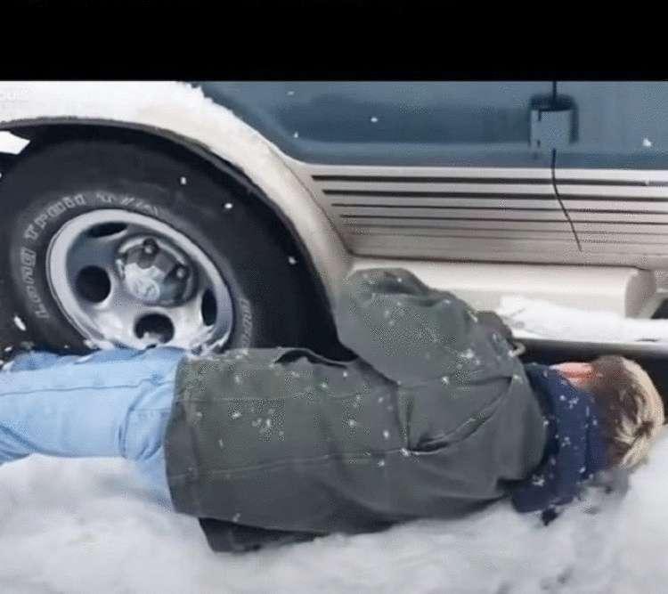 Уличный пес замерзал под фургоном, пока за ним не пришли