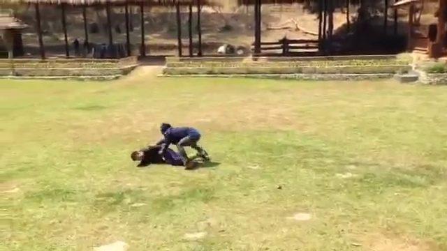 Слон спасает своего смотрителя ( видео)